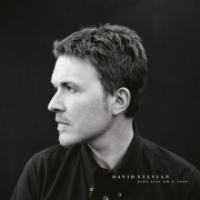 David Sylvian - Dead Bees On A Cake (2LP)