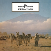 The Teardrop Explodes - Kilimanjaro (LP)