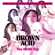 Various - Brown Acid: The Ninth Trip (CD)