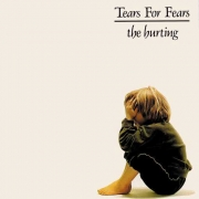 Tears For Fears - The Hurting (LP)