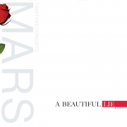 Thirty Seconds To Mars - A Beautiful Lie (LP)