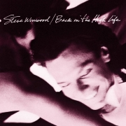 Steve Winwood - Back In The High Life (LP)